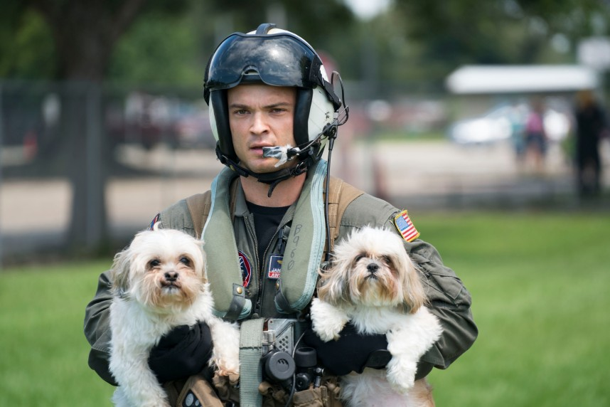 Naval_Aircrewman_(Helicopter)_2nd_Class_Jansen_Schamp_rescues_two_dogs_after_flood_waters_from_Hurricane_Harvey_reached_the_grounds_of_a_shelter._(36824232411).jpg