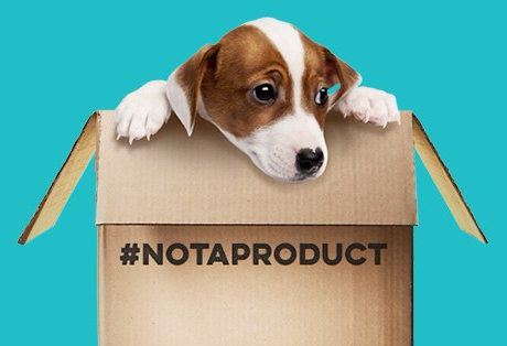 notaproduct.jpg